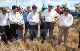 Liên Hợp Quốc hỗ trợ các tỉnh miền Trung bị thiệt hại vì thiên tai