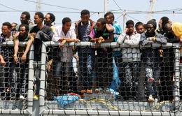 Phản ứng quốc tế về thỏa thuận người di cư của châu Âu