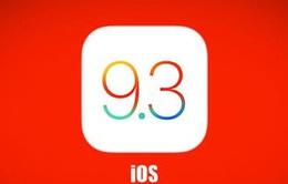 Apple tung bản vá lỗi khắc phục lỗ hổng bảo mật