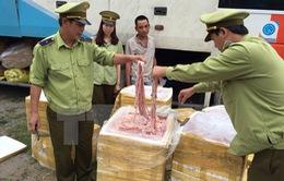 Tiêu hủy hơn 1,4 tấn lòng lợn thối tại Bình Dương