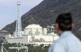 Nhật đóng cửa lò phản ứng hạt nhân 9 tỷ USD
