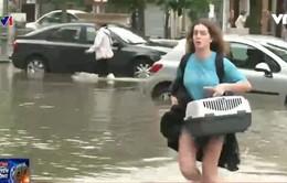 Lũ lụt nghiêm trọng tại miền Trung nước Pháp