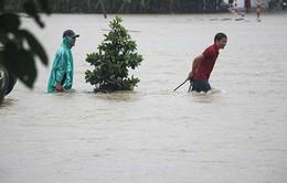 Ngày 3/12, mưa to ở các tỉnh từ Thừa Thiên-Huế đến Quảng Ngãi