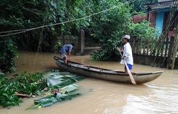 10 người chết và mất tích do mưa lũ tại Quảng Ngãi