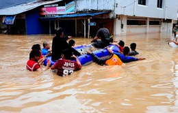 Lũ lụt, lở đất ở Indonesia, 43 người thiệt mạng
