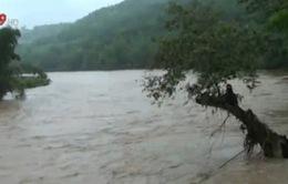 Lào Cai: 6 công nhân khai thác vàng thương vong do mưa lũ