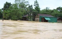 Nguy cơ lũ trên các sông Quảng Ngãi - Phú Yên đạt đỉnh mức báo động 2-3