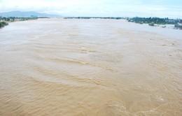 Lũ trên các sông từ TT - Huế đến Quảng Ngãi có thể lên lại