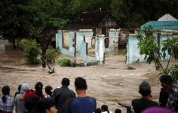 Lũ lụt, lở đất ở Indonesia, số người thiệt mạng tăng lên 35
