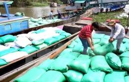 Thị trường lúa gạo tại ĐBSCL trầm lắng