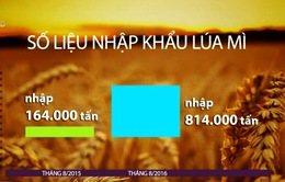 Vì sao lúa mì nhập khẩu tăng đột biến?