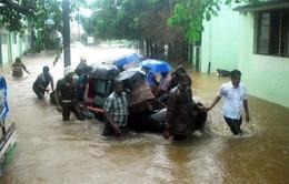Lũ lụt cướp đi sinh mạng hơn 50 người tại Ấn Độ