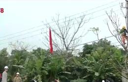 Quảng Trị nâng cấp lưới điện cho người dân đón Tết Nguyên đán 2016
