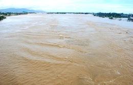 Lũ trên các sông khu vực Bắc Bộ và Bắc Trung Bộ đã xuống thêm