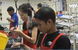 Malaysia dỡ bỏ một phần lệnh cấm thuê lao động nước ngoài