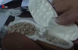 Phá chuyên án ma túy lớn nhất từ trước tới nay tại TT-Huế