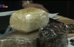 """Phá đường dây buôn bán ma túy """"khủng"""" tại Hà Tĩnh"""