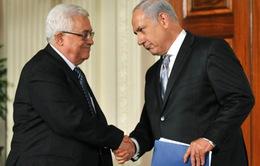 Ai Cập tìm cách sắp xếp cuộc gặp giữa lãnh đạo Israel và Palestine
