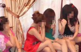 Đề nghị không hình sự hóa các quan hệ mại dâm