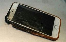 iPhone 6 bất ngờ bốc cháy trên chuyến bay từ Washington tới Hawaii