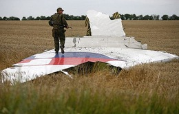 Malaysia, Ukraine yêu cầu cứng rắn với kẻ bắn rơi máy bay MH17