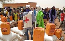 3 nhân viên Chữ thập Đỏ quốc tế mất tích tại Mali