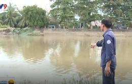 Nước mặn bất ngờ xâm nhập ĐBSCL