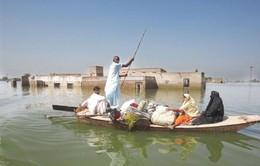 Hồ lớn nhất Pakistan bị hủy diệt vì ô nhiễm