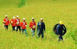 Liên doanh Viettel tại Lào đạt doanh thu 1 tỷ USD