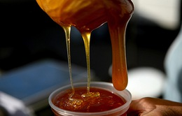 Thông tin 85% mật ong Cà Mau bị pha chế là sai sự thật