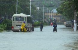 Bộ Y tế khuyến cáo người dân chủ động phòng chống dịch bệnh mùa mưa, lũ