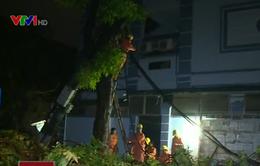 Hà Nội khắc phục sự cố mất điện trong đêm do bão số 1
