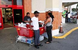 Ngành bảo hiểm Mỹ dự báo thiệt hại hàng tỷ USD do bão Matthew