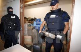 Bê bối trong các cơ quan phòng chống ma túy tại Pháp