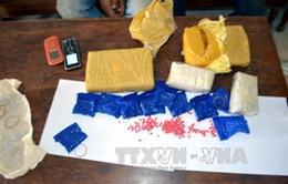 Bắt giữ vụ vận chuyển ma túy tại Quảng Trị