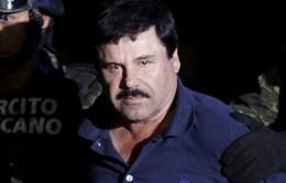 Mexico đồng ý dẫn độ El Chapo sang Mỹ