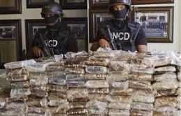 Cảnh sát Bolivia thu giữ gần 8 tấn cocaine