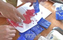 Bắt vụ vận chuyển 12.000 viên ma túy tổng hợp tại Thanh Hóa
