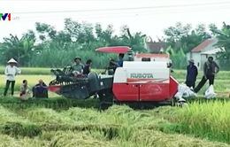 Hiện tượng bảo kê máy gặt đập ở Nghệ An