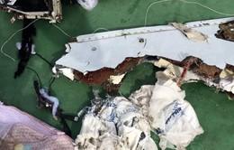 Ai Cập bác thông tin có vụ nổ trên chuyến bay MS804