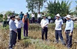 Bộ trưởng Cao Đức Phát kiểm tra công tác chống hạn Kon Tum