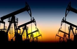 Các nước vùng Vịnh vay 390 tỷ USD để bù giá dầu giảm