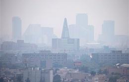 Mexico ban bố lệnh báo động môi trường cấp 1
