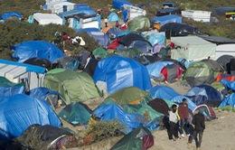 WHO cảnh báo người di cư vào châu Âu có nguy cơ nhiễm lao