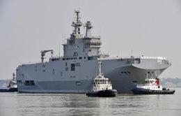 Nga, Ai Cập bàn việc chuyển giao máy bay trực thăng trang bị cho tàu Mistral