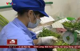 Quy trình sản xuất thực phẩm sạch online gây sốt trên thị trường