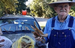 Ông lão 80 tuổi bán củi khiến hàng nghìn người cảm động
