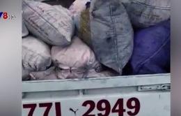 Bình Định: Bắt giữ xe tải chở 800kg mỡ heo bốc mùi