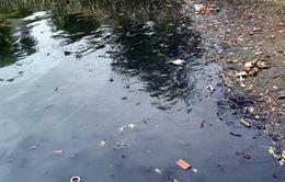 Các hồ ở Hà Nội vẫn đang bị ô nhiễm