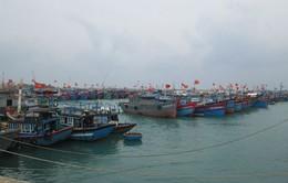 Phú Yên, Bình Định: Kêu gọi tàu thuyền tránh trú áp thấp nhiệt đới